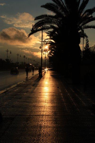 sun-shine2_n